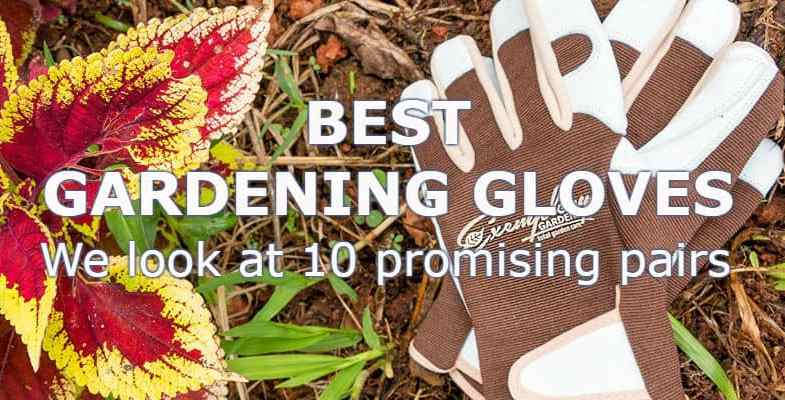 Best gardening gloves -Top 10 Reviews