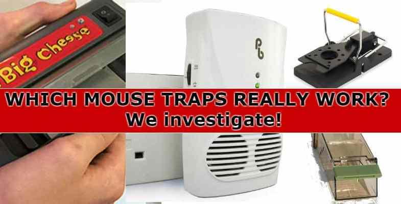 Best Mouse Trap Reviews 2017 – Mice trouble? – We compare snap traps, live catch & electric traps