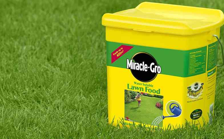 Best Lawn Feed For Lawns – Top 6 Water Soluble & Granular Lawn Fertilisers