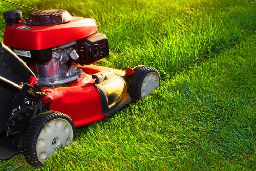 Once you decide when you are going to scarify it's time to plan ahead and make all the necessary preparations. In order to properly scarify you need your grass to be short and dry so start to bring the height down over the span of one or two weeks prior to scarifying. This will help reduce the length of the grass without shocking the grass and it will allow for increased air circulation to dry out the grass prior to scarifying.