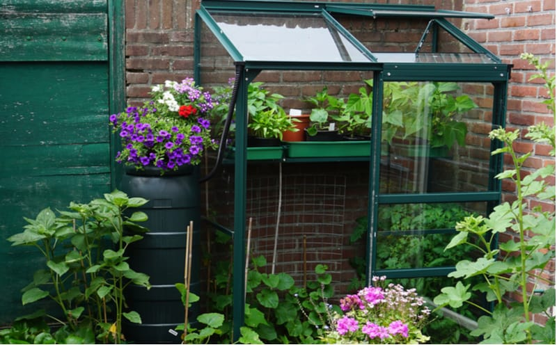 Top 6 best mini greenhouses thats takes up a small footprint