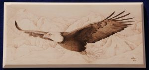 bald eagle wood burning pyrography bmj