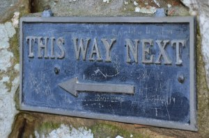 This way next by David Amsler