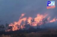 2000 hectáreas ya han sido devoradas por las llamas en Ujarrás de Buenos Aires.