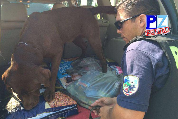 Seguridad Pública realiza fuerte operativo en Zona Sur del país.