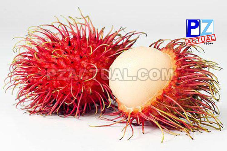 Faltan pocos días para la Feria del Rambután ¿Sabe usted cuáles son los beneficios de esta  deliciosa fruta?