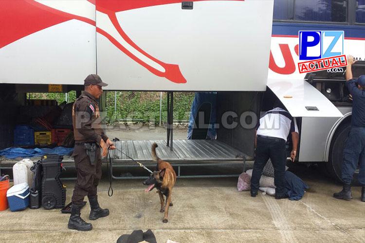 Policía de Fronteras decomisó fuerte contrabando de joyas y perfumes en bus de la Zona Sur del país.