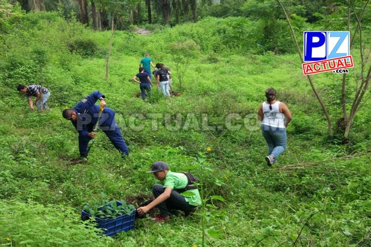 Guardacostas impulsa reforestación en cercanías del río Cañitas en Quepos.