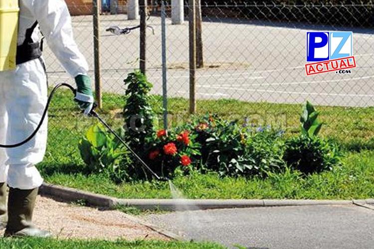 Ministerio de Salud reitera prohibición de uso de herbicidas industriales en espacios de convivencia humana
