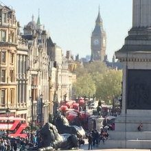 A crowd of buses heads down Whitehall to Big Ben