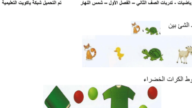 Photo of تدريبات رياضيات للصف الثاني اعداد شمس النهار