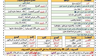 Photo of معجم الثروة اللغوية الصف السابع الوحدة الثانية رحلة عبر الزمن