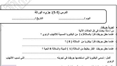 Photo of أوراق عمل الوراثة أحياء للصف الثاني عشر