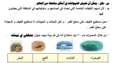Photo of تلخيص علوم التكيف في الكائنات الحية للصف السادس أ. إبراهيم علي 2018-2019