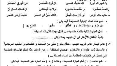 Photo of الصف الخامس اختبار عربية مبارك الكبير التعليمية 2016-2017