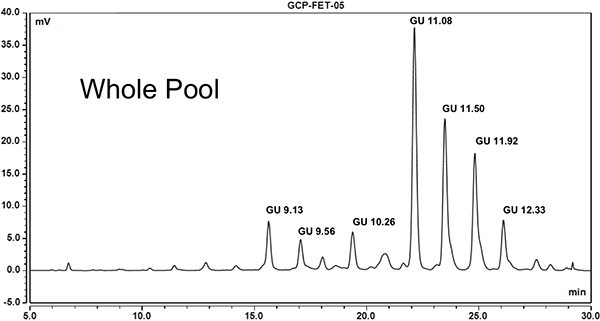 Fetuin N-linked Glycan Profile