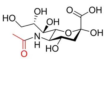NANA:a skeletal representation of N-acetyl neuraminic acid Neu5Ac