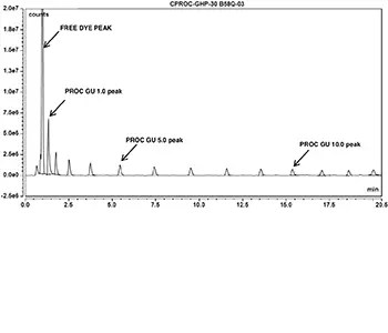 glucose homopolymer ladder