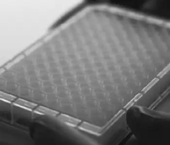 PBM Glycosidase Removal Plate Image