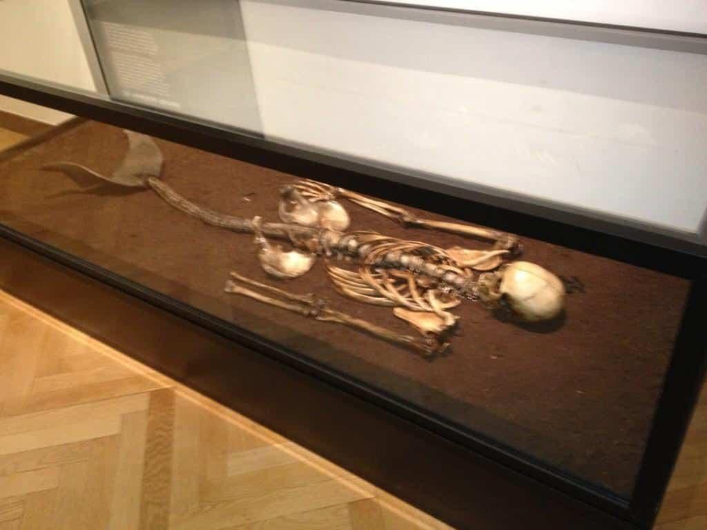 الحقيقة وراء هيكل حورية البحر في متحف الدنمارك الوطني