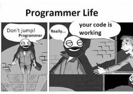 What is a programmer's life like?