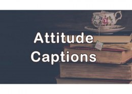 What is the best attitude?