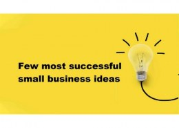 What are the most successful small businesses?