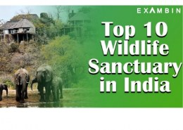 Which is the best Wildlife Sanctuary in India?