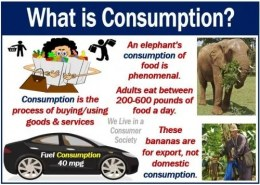WHAT IS CONSUPTION?