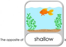what is the antonym for shallow