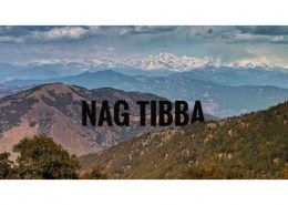What is the mobile network situation in nag tibba?