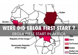 From where did Ebola start?