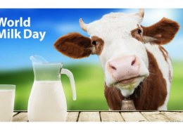 What are the requirements to be part of World Milk Day?