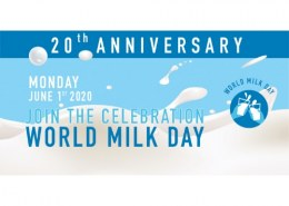 What is the basic thing required for promoting my World Milk Day campaign on Social Media?