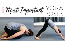 Which is the best yoga asanas?