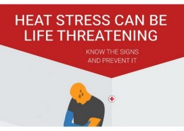 What are the symptoms of heat stress?