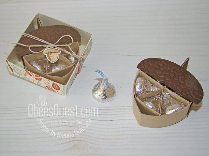 Hershey's Acorn with Gift Box