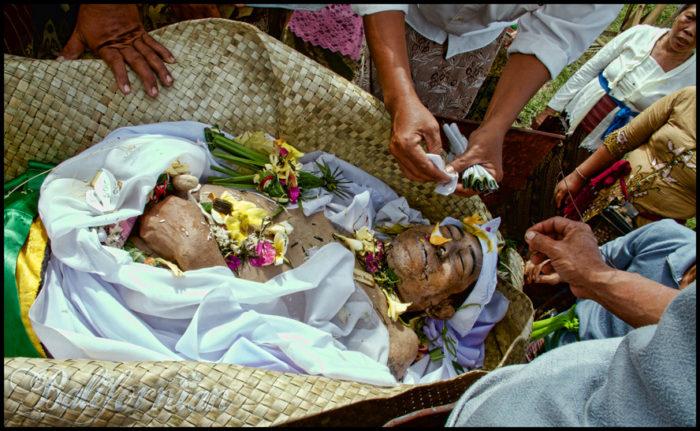 Bali Cremation Ceremony Celebrate Death