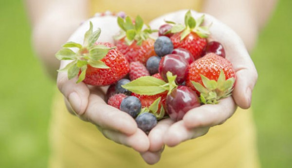 Nutrición2