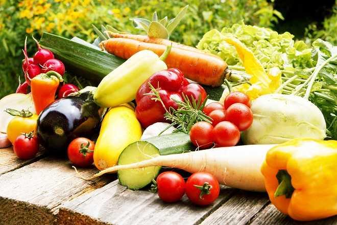 dieta-vegana-equilibrada-adelgazar