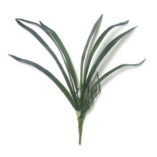 Folha de Orquídea – AN0006