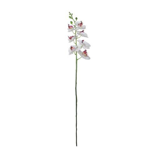 haste-orquidea-branco-rosa