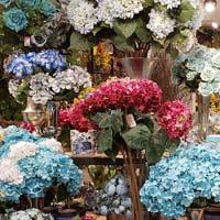 Categoria Flores