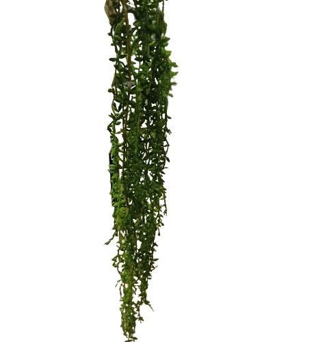 pendente de folhas