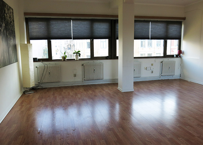 Store vinduer slipper inn godt med lys