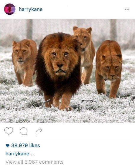 Screen grab de la foto de Harry Kane en su cuenta de Instagram