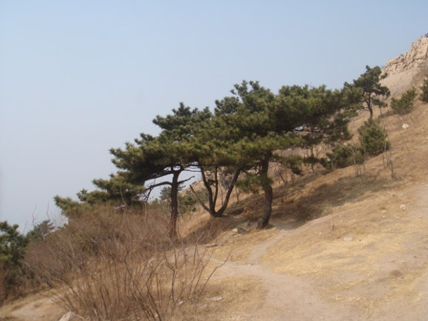 Fushan Qingdao Hiking Trails