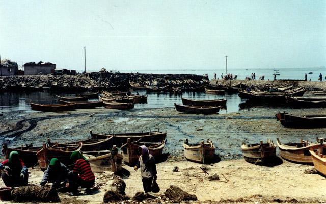 Qingdao Photos Clay Army V Fishing Boats