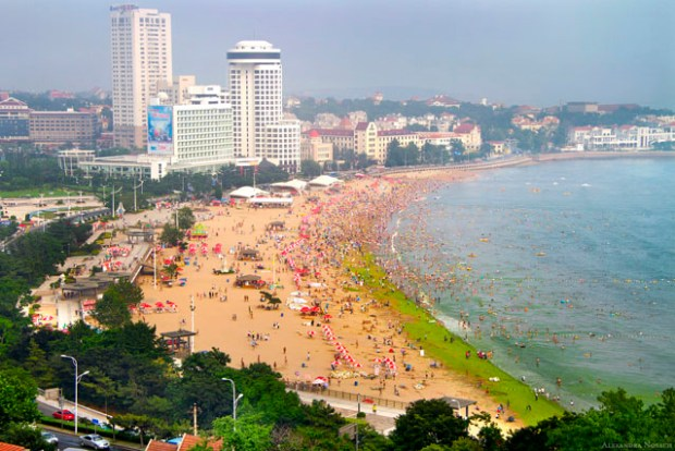 Qingdao Photos Alexandra Nosach Beach Number 1 Algae