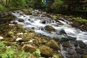 2015-05-26-Qispi-Jura_Leman-Dent_Vaulion-Vallorbe-IMG_9067